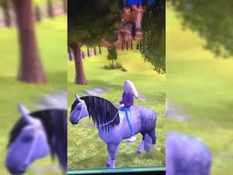 Star Stable Spinnen