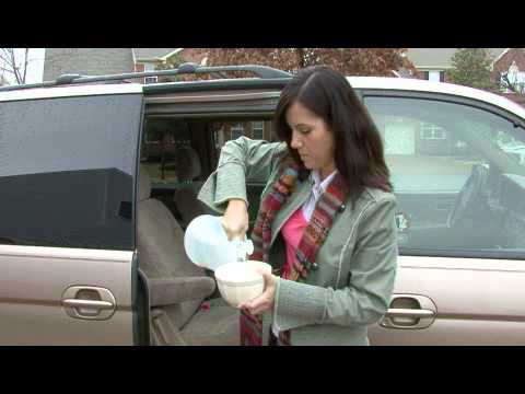 How To Get Rid Of Dog Odor In A Car