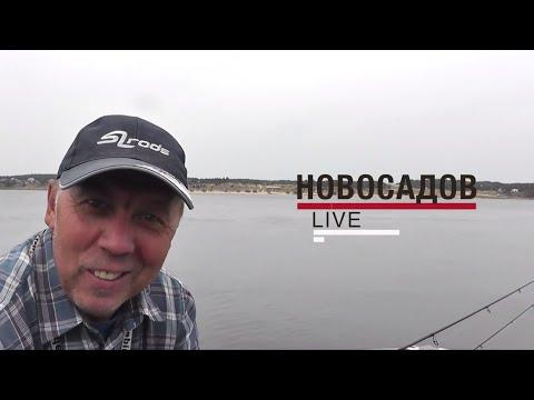 #LiveSL №5. Ловля жереха с Валерием Новосадовым