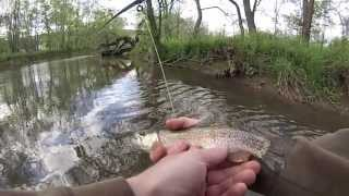 Standing Stone Creek Trout Fishing