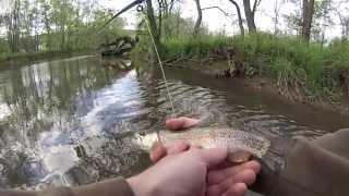 Standing Stone Creek Trout Fishing