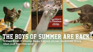 Cat Center Week 1 - Beau Catson & Best Bloopers - Paw Star Game
