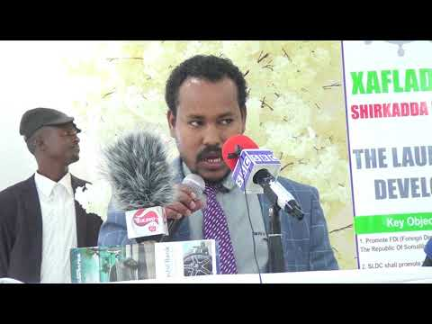 hailu trad office ethiopia in somaliland