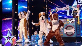 Ant Dec And Stephen Fool Judges With Secret Britain 39 S Got Talent Audition Bgt 2019