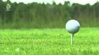 Lewandowski, Szczęsny, Krychowiak i Klich grają w golfa:) /Lewandowski and Szczęsny play golf