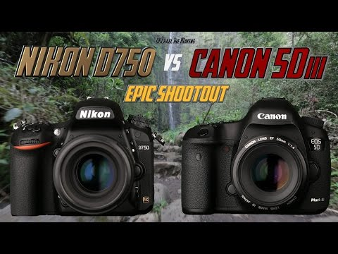 Nikon D750 vs Canon 5Diii Epic Shootout Review | Which camera to buy? | Tutorial Training
