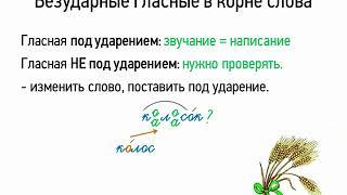 Правописание безударных гласных в корне слова (5 класс, видеоурок-презентация)
