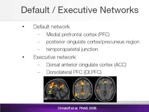hqdefault - Brain Resting State Is Disrupted In Chronic Back Pain Patients
