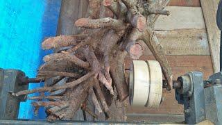 Bubut kayu - kreasi tak terduga dan luar biasa dari akar pohon