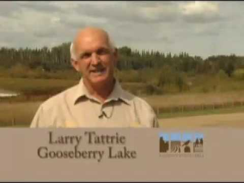 Parks & Recreation Of Alberta's Special Area