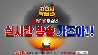 [김정민의자연사박물관]생방 가즈아!-모사드,림종석 스카웃 계획(?) 2부