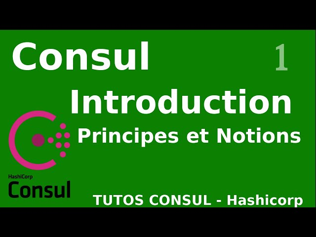CONSUL - 1. INTRODUCTION ET NOTIONS