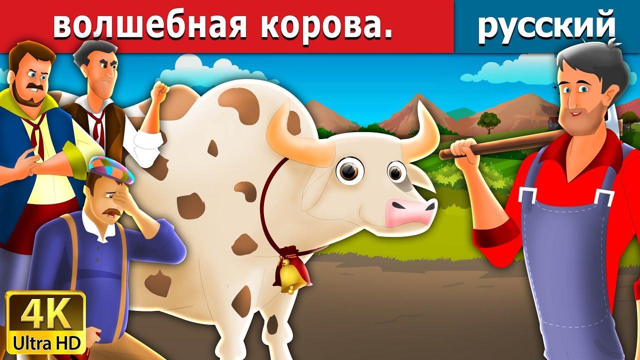 Русская комолая мясная порода коров | 720x1280