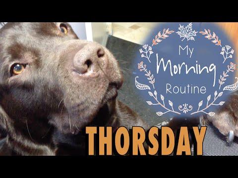 THORSDAY - Thor's Morning Routine