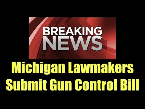Michigan Legislature Submits Gun Control Bill