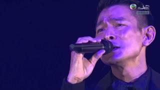 [HD] 2013 12 30 劉德華【似水流年】:Anita Mui 梅艷芳。10。思念。音樂會