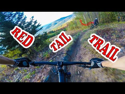 Mountain Biking Red Tail Trail   North Conway, New Hampshire