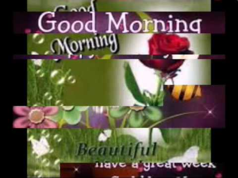 Good morning monday greeting youtube good morning monday greeting m4hsunfo