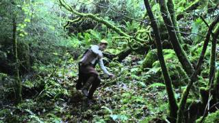 The Dragons of Camelot - Trailer