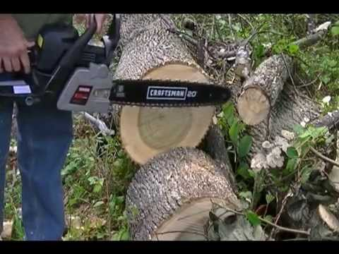 Craftsman Chainsaw 358350982 Same As Poulan Pro Pp5020av 20 Inch Bar 50cc 2 Stroke Cutting Log