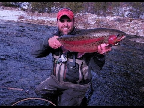 Fly Fishing Colorado- Rocky Mountain Trout Volume 5