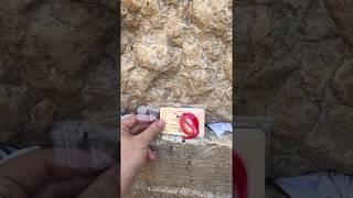Красная нить со Стены плача в Иерусалиме  Krasnaja-nit.ru