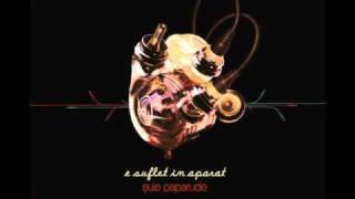 Suie Paparude - Soundcheck (E suflet in aparat 2010)