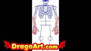 How to draw a skeleton, step by step