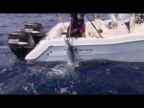 Antigua Offshore