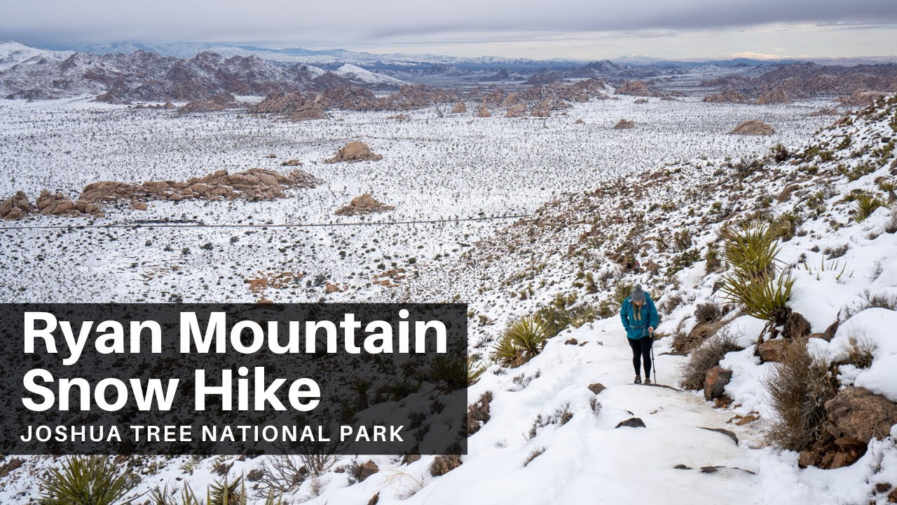 Ryan Mountain Snow Hike In Joshua Tree National Park