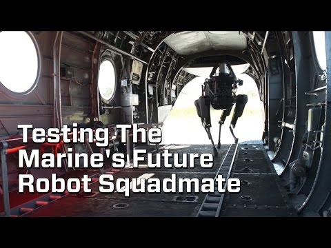 """Marine's Test Out Their Robot """"Dog"""""""