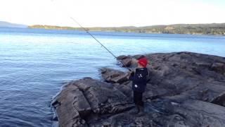 Fisking på Snåsavatnet