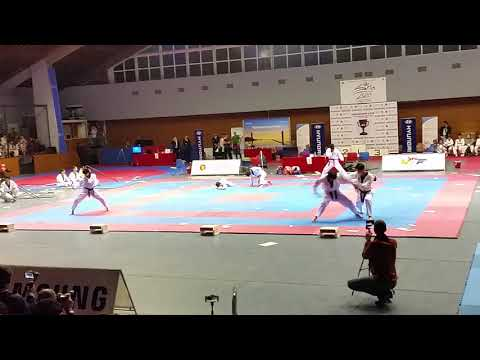 Bulgaria 2017 Kukkiwon Taekwondo demonstration of the nation