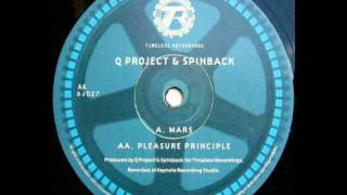 Q Project & Spinback - Pleasure Principle