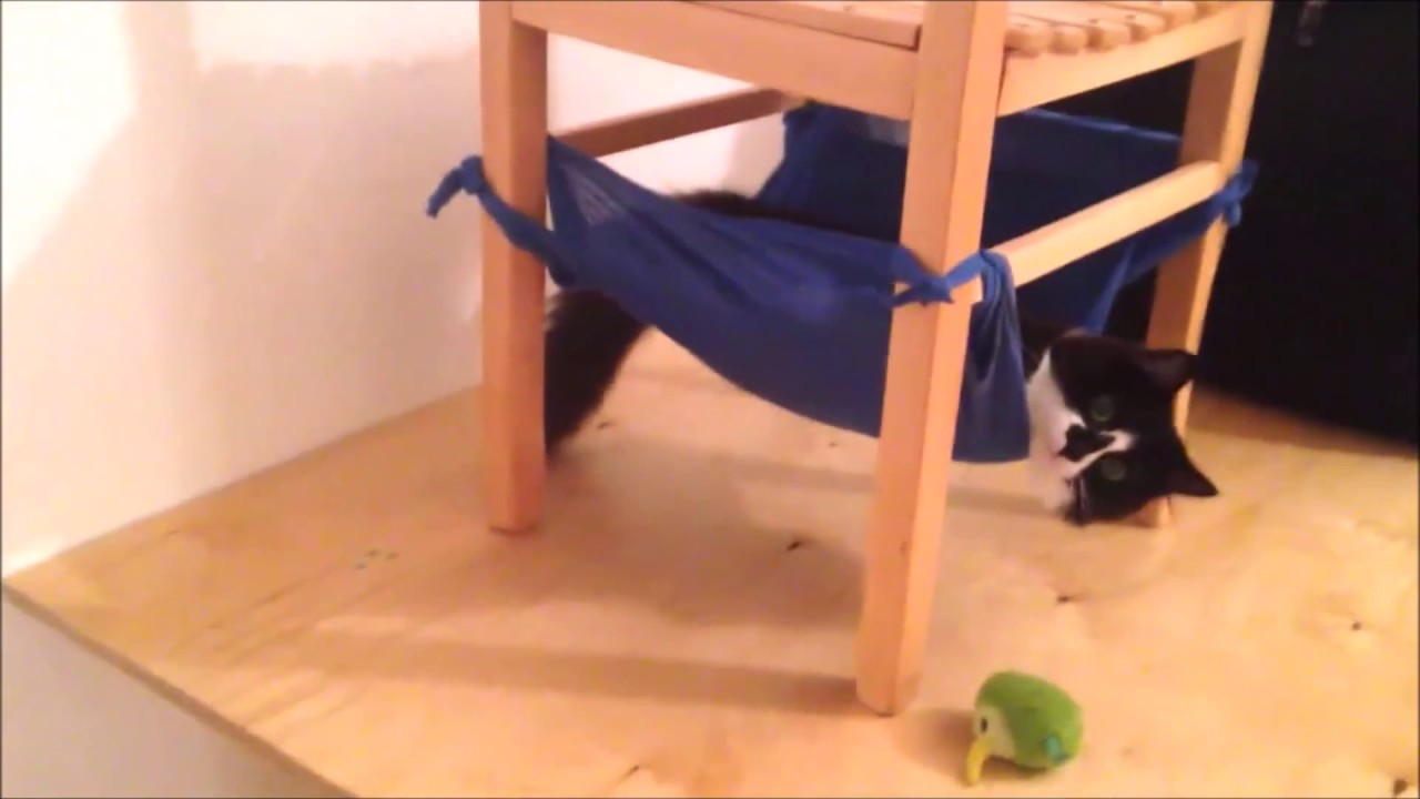 cat hammock under chair poang covers etsy how to diy youtube