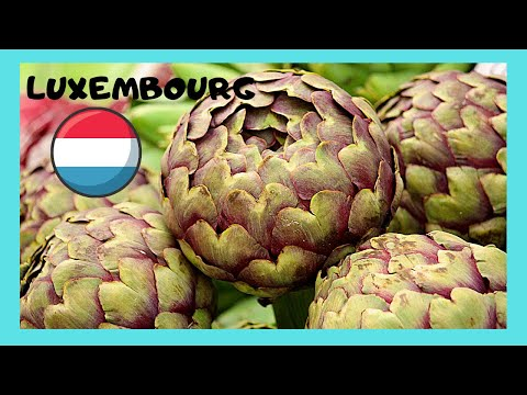 LUXEMBOURG, the beautiful PRODUCE AND FLOWER MARKET (CENTRAL EUROPE)