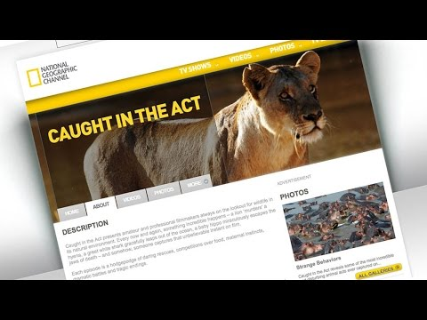CAUGHT IN THE ACT - TV SPOT Travel Video
