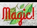 Guang Hui Colored Pencil Magic