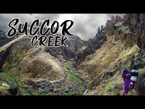 The Succor Creek Zeolite Mines