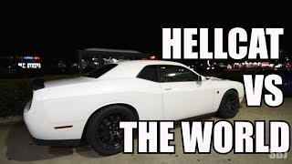 HELLCAT VS THE WORLD (Viper, Mustang, Corvette & More!)