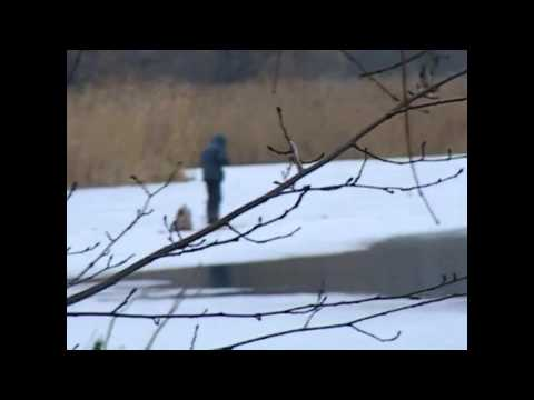 рыбалка в харькове на лопани видео