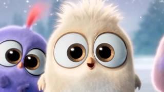 Angry Birds в кино 2016 | С наступающим! - Трейлер 2016 (Мультик)
