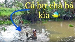 Vlog 133 Kéo Côn Miền Tây: Tay Không Bắt Mấy Chục Ký Cá Dưới Sông Sâu  Hồ Thùy Dương Vlog