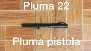 Pluma 22
