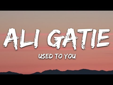 Ali Gatie - Used to You (Lyrics)