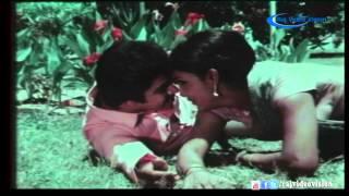 Illaigal Meethum Malargal Meethum Song HD | Kulirkaala Megangal