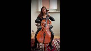 Slow Down - cello looping