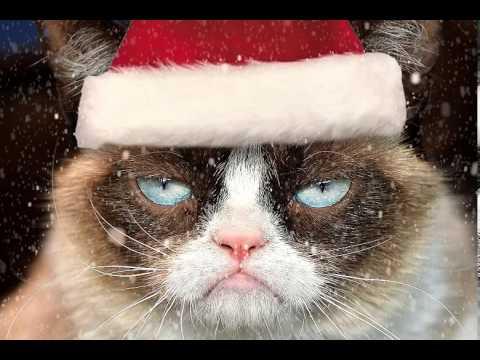 Grumpy Cat Let It Snow