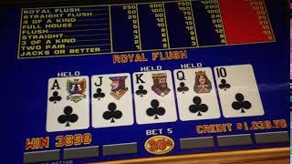 Hitting a Royal Flush in Las Vegas, winning $1000! Poker, Video Poker, @ Flamingo Casino