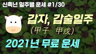 갑자(甲子), 갑술(甲戌) 일주 | 2021년 신축년 …